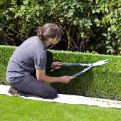 A woman kneeling timming a boxwood topiary hedge.