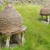 Straw wicker hive on stones
