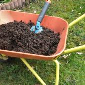 Compost in a wheelbarrow