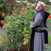 Monk tending dahlias in a cloister garden