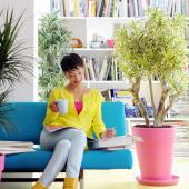Lady sitting on sofa surrounded with easy indoor care plants, in this case dracaena plants