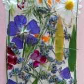 Herbarium cover with flowers